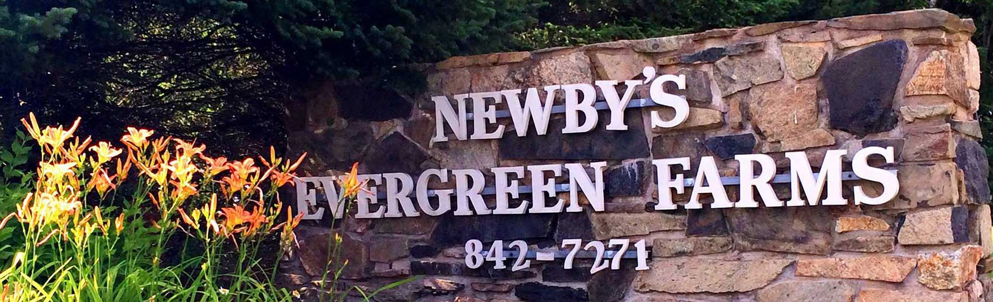 Newby's Evergreen Farms